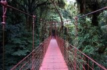 Costa Rica: Monteverde Cloudforest Hängebrücke