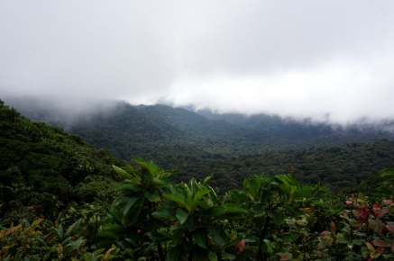 Costa Rica: Monteverde Cloud Forest
