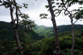 Costa Rica: Monteverde