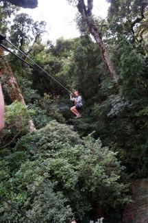Costa Rica: Ziplining 100% Aventura