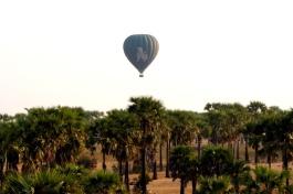 Myanmar Bagan Heißluftballon vor Palmen