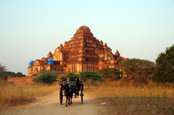 Myanmar Bagan Pferdekutsche vor dem Damagyangi Tempel