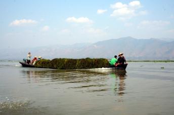 Myanmar Inle See Transport