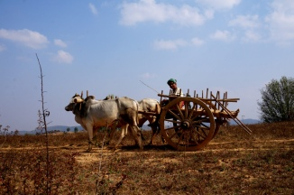 Myanmar Kalaw Trekking Begegnung