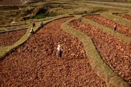 Myanmar Kalaw Trekking Felder