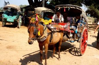 Myanmar Pferdekutschen Inwa