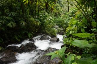 Nicaragua: La Fortuna heiße Quellen