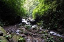Nicaragua: Ometepe Wanderung zu den Cascada San Ramon