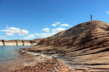 USA_Antelope Island Lara