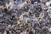 USA: Death Valley Salzgebilde