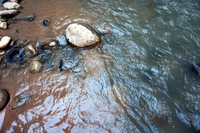 USA: Zion Nationalpark Wanderung