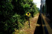 Sri Lanka im Zug von Jaffna nach Anuradhapura