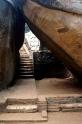 Sri Lanka Sigiriya Aufstieg