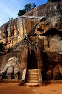 Sri Lanka Sigiriya Löwen