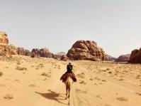 Auf dem Kamel durchs Wadi Rum