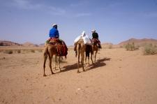 Auf Kamelen durch das Wadi Rum