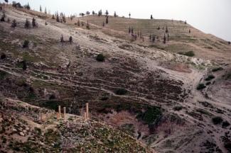 Tag 3 Ruinen in Pella