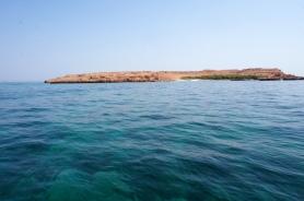Daymaniyat Island