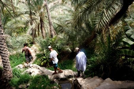 Unterwegs im Wadi Tiwi