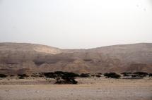 Wadi Shuwaymiyah Salalah